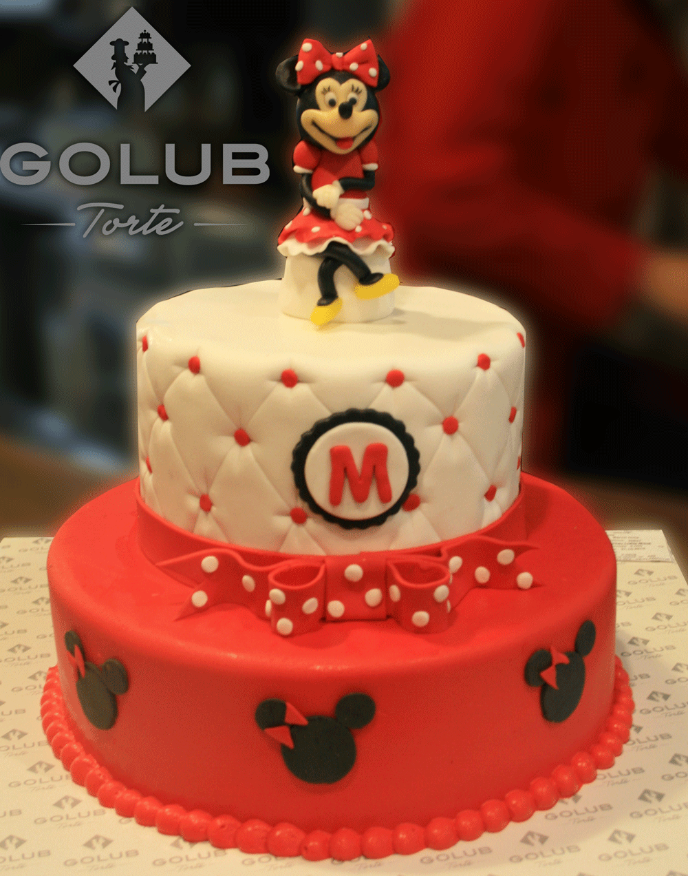 minnie mouse d313